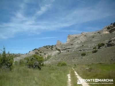 Sierra de la Pela - Barranco de Borbocid; Hiking free; senderismo comunidad de madrid